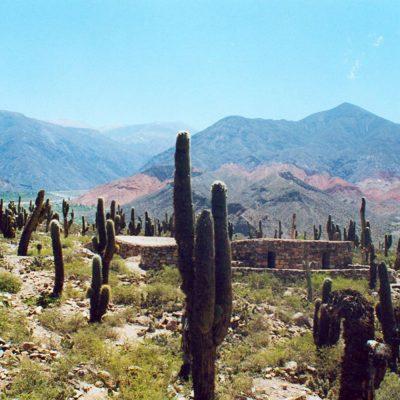 noroeste-argentino-1